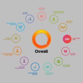 OxWall Spain